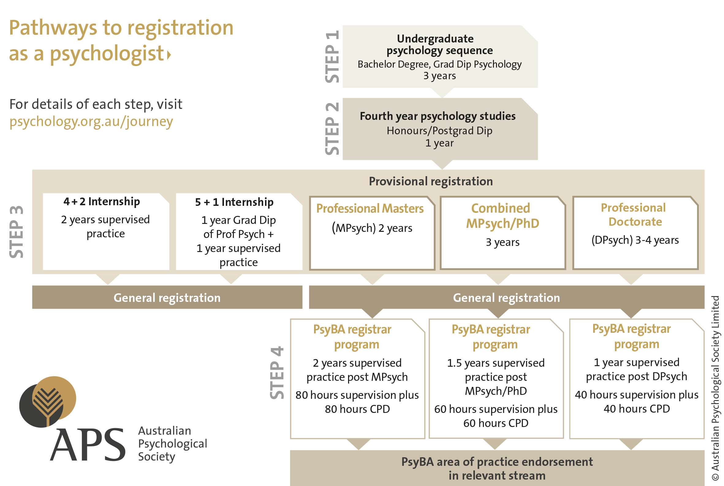 This diagram shows the steps you need to take to become a registered psychologist with the APS