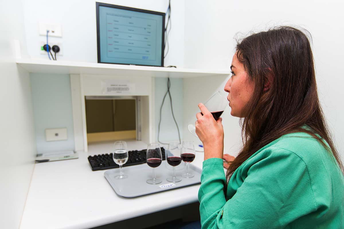 Taste and assess wines in our purpose-built sensory and assessment rooms.