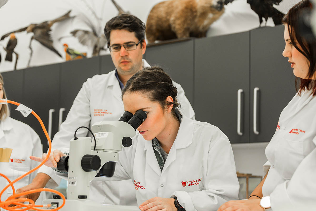 Dedicated labs provide space for analysis, research and collaboration.